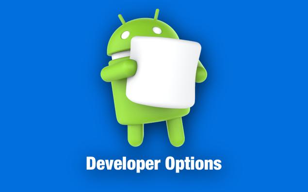 فعالسازی گزینه های برنامه نویس Developer Options