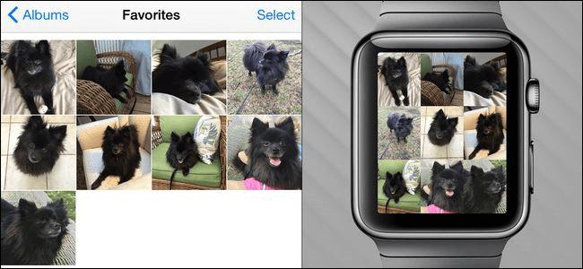 راهنما جامع اپل واچ apple watch guide