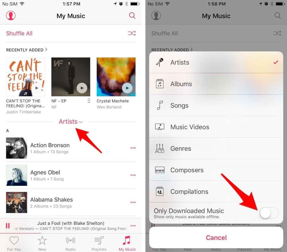 ویژگیهای کاربردی اپل موزیک