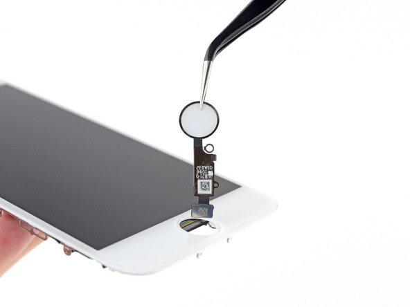 تعمیر آیفون : تعویض دکمه هوم آیفون 8 (Touch ID)