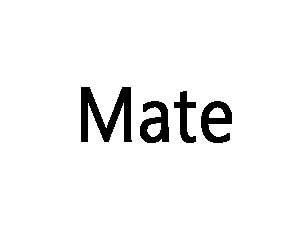 هواوی سری Mate